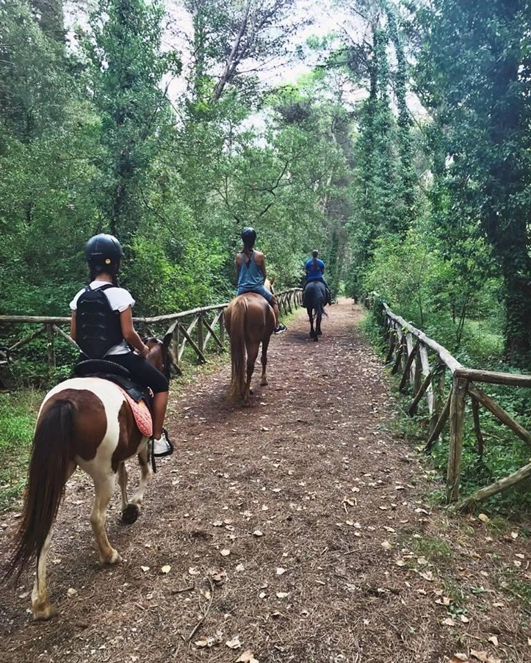 Passeggiata a cavallo al Casale dei Pini