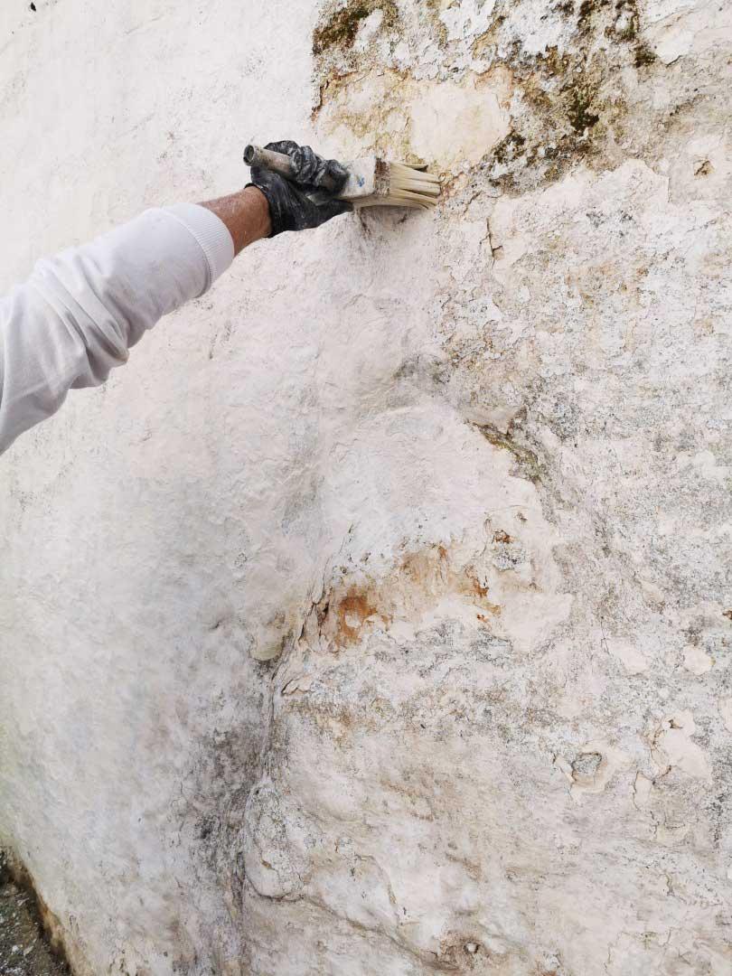 A spasso per i borghi della Valle d'Itria a caccia del bianco