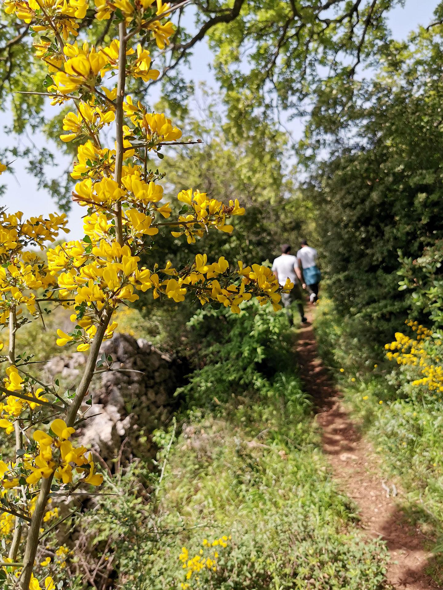 Picnic di primavera in Valle d'Itria